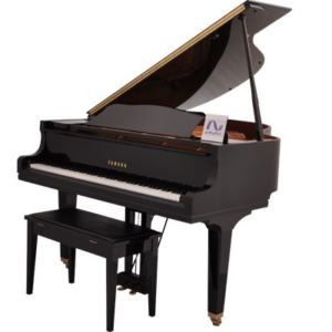 پیانو آکوستیک رویال یاماها C1X PE